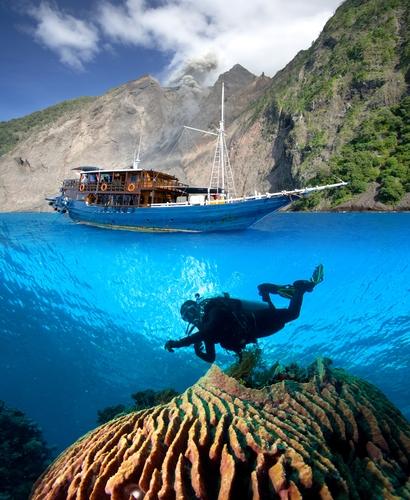 DivingIndonesiaMatsonT_67912246(1)